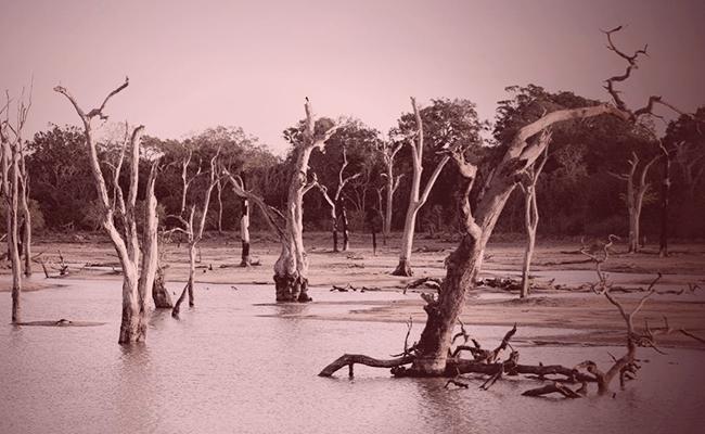 O que significa sonhar com inundações