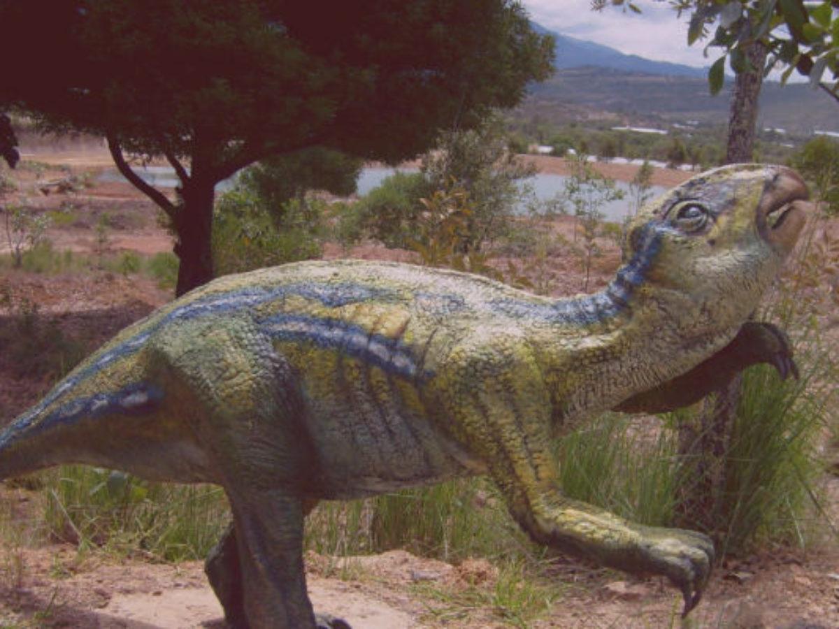 Que Significa Sonar Con Dinosaurios La serie se desarrolla en la prehistoria, donde los dinosaurios viven en sociedad algo parecida a la humana, tienen familias y. que significa sonar con dinosaurios
