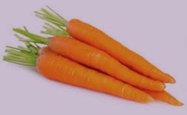 O que significa sonhar com cenouras