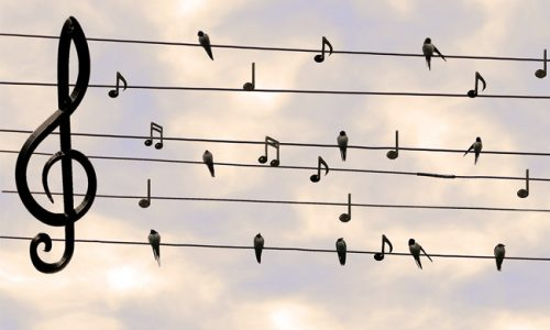 soñar con canción